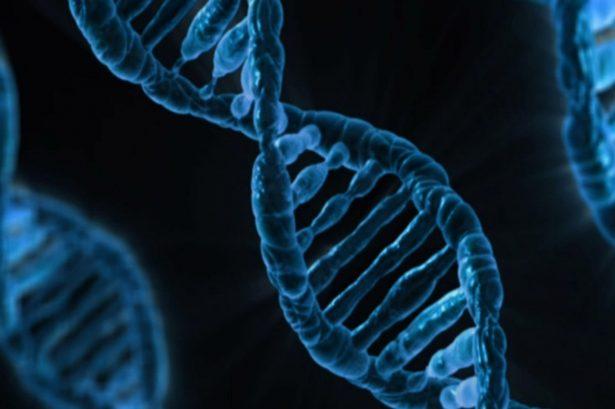 DNA © Public Domain