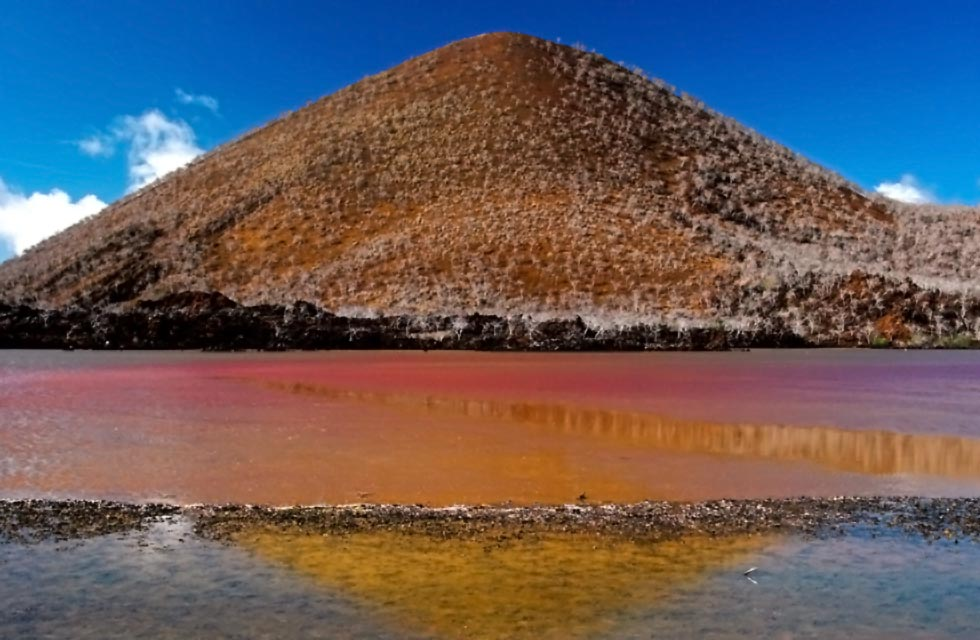 Galapagos Places: Pink lagoon and Hill on Floreana © Chris Deeney
