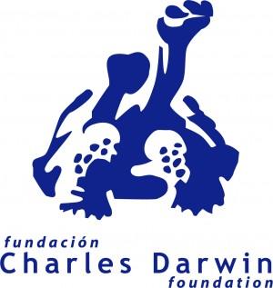 CDF logo 2009©CDF