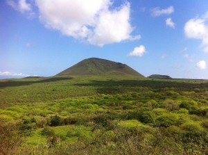 Galapagos Places: Picture of Floreana Island by Igor Starukha (creative commons 3.0)