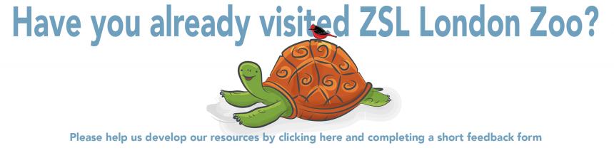 Galapagos Graphics: Feedback Graphic ©GCT