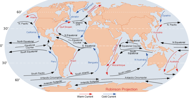 Galapagos Graphics: Global Ocean Currents © Dr Michael Pidwirny